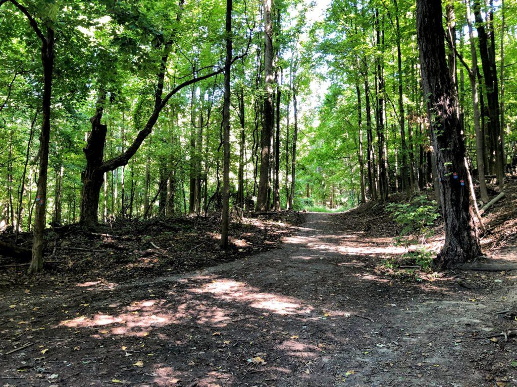 紐約爬山 Breakneck Ridge - 經驗分享 5