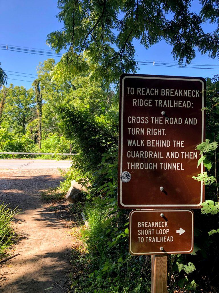 紐約爬山 Breakneck Ridge - 經驗分享 6